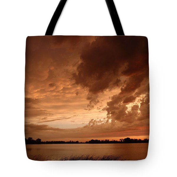 Mciver Lake Tote Bag by James Peterson