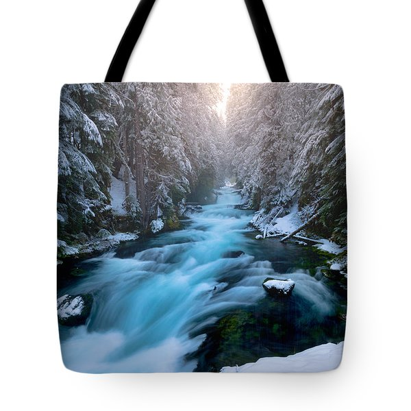 Mckenzie Delight  Tote Bag