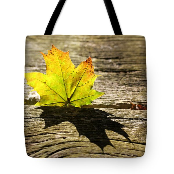 Me And My Shadow 2 Tote Bag by Mary Bedy