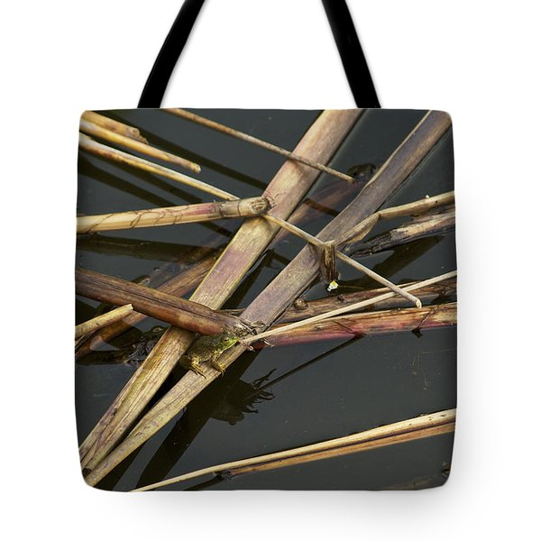 Tote Bag featuring the photograph Me And My Shadow - A Frog In The Pond by Jane Eleanor Nicholas