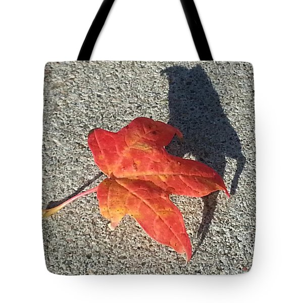 Tote Bag featuring the photograph Me And My Shadow by Caryl J Bohn