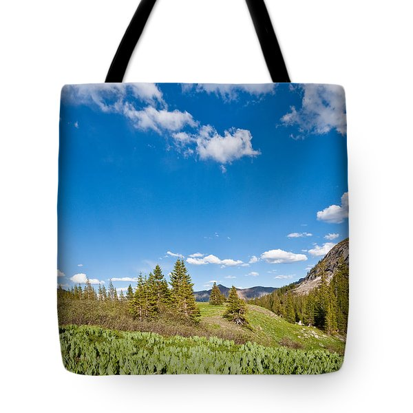 Tote Bag featuring the photograph Meadow Of False Hellebore by Jeff Goulden