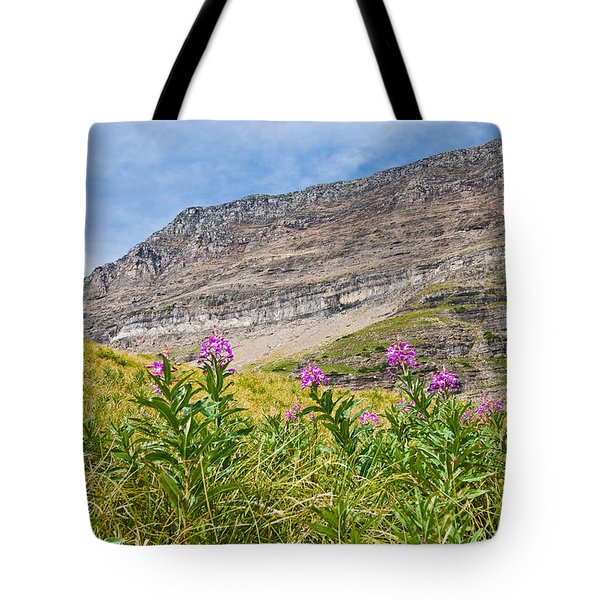 Meadow Of Fireweed Below The Continental Divide Tote Bag