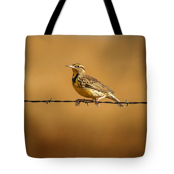 Meadowlark And Barbed Wire Tote Bag