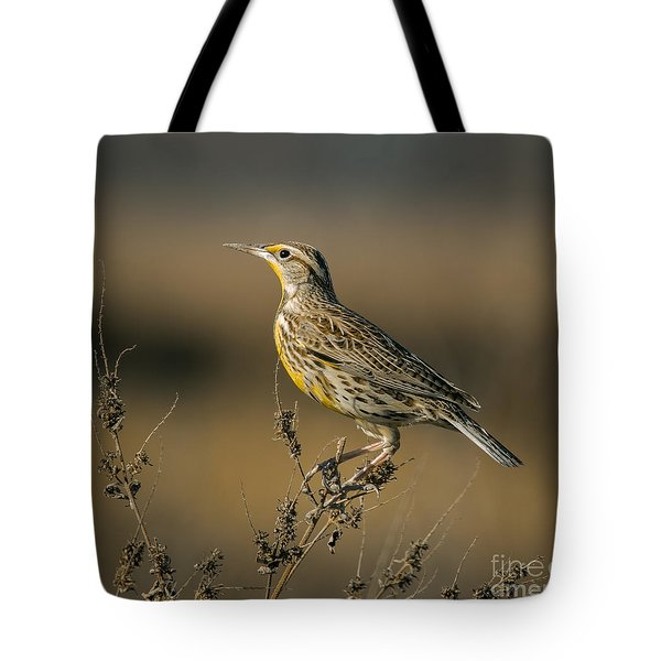Meadowlark On Weed Tote Bag