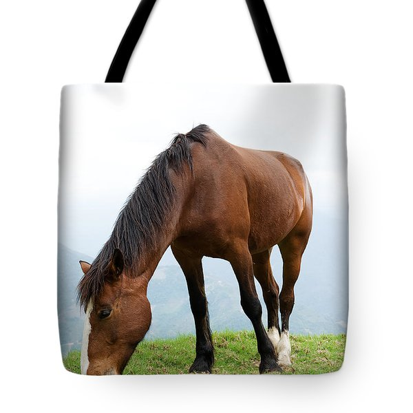 Tote Bag featuring the photograph Meal Time by Yew Kwang