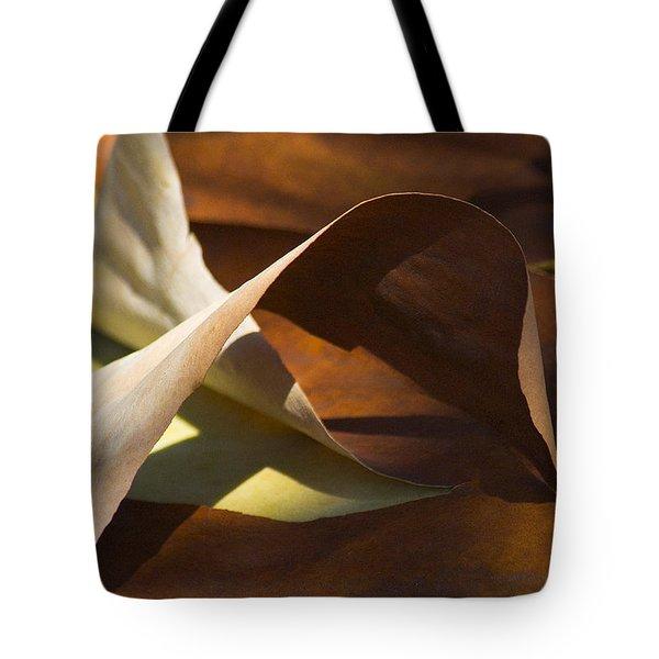 Mebius Strip Tote Bag