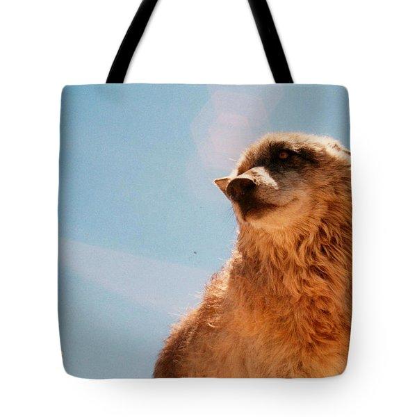 Medicine Wolf Tote Bag
