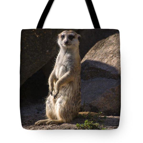 Meerkat Looking Forward Tote Bag by Chris Flees