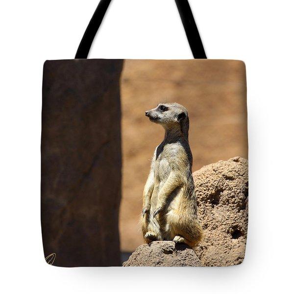 Meerkat Lookout Squared Tote Bag by Chris Thomas