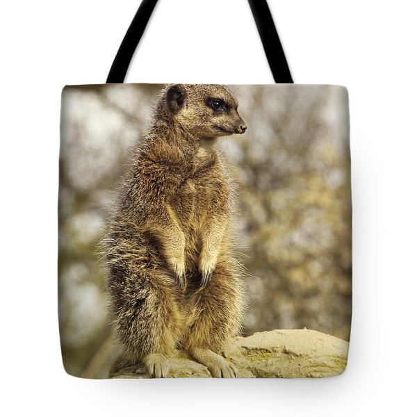 Meerkat On Hill Tote Bag
