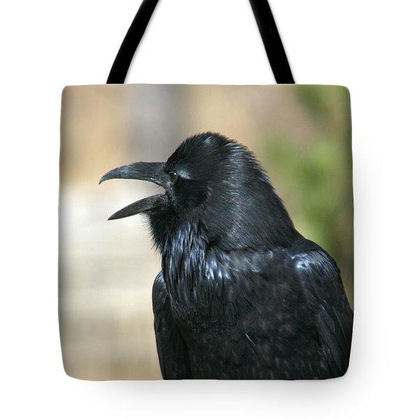 Meet My Friend   Where Did He Go Tote Bag