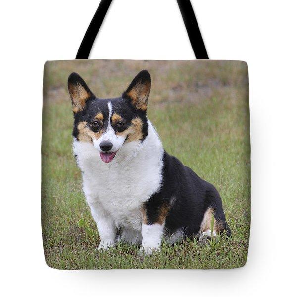 Meet Trixie Tote Bag