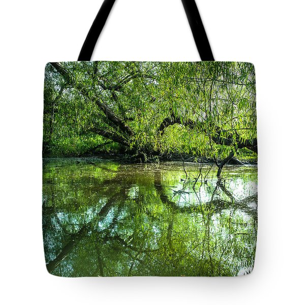 Meeting A Willow Tree In The Evening Tote Bag