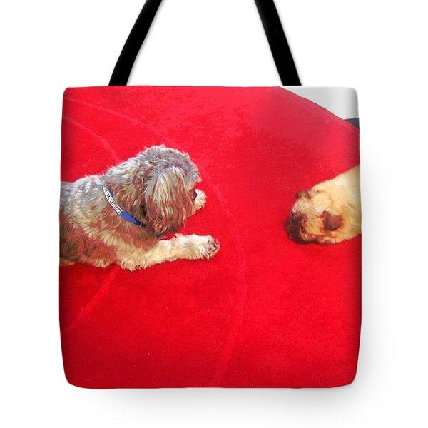Dog And Puppy Pet Photography Lhasa Apso Shih Tzu Pomeranian   Tote Bag