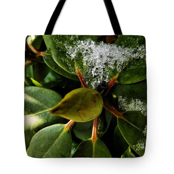 Tote Bag featuring the photograph Melting Crystals by Robyn King