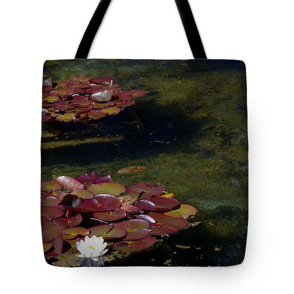 Memories Of Monet Tote Bag by Marilyn Wilson