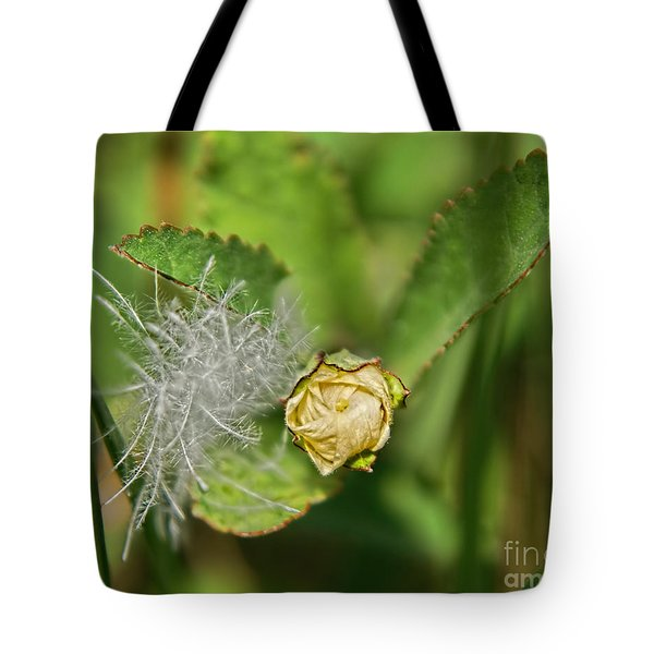 Tote Bag featuring the photograph Memories by Olga Hamilton