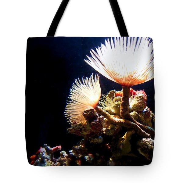 Mermaid's Playground Tote Bag