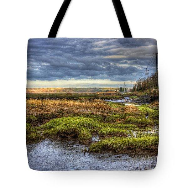 Merrimack River Marsh Tote Bag