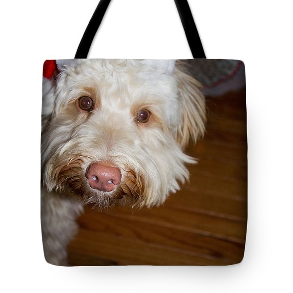 Merry Christmas From A Labradoodle Tote Bag