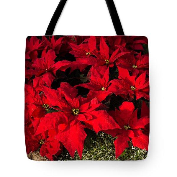 Merry Scarlet Poinsettias Christmas Star Tote Bag