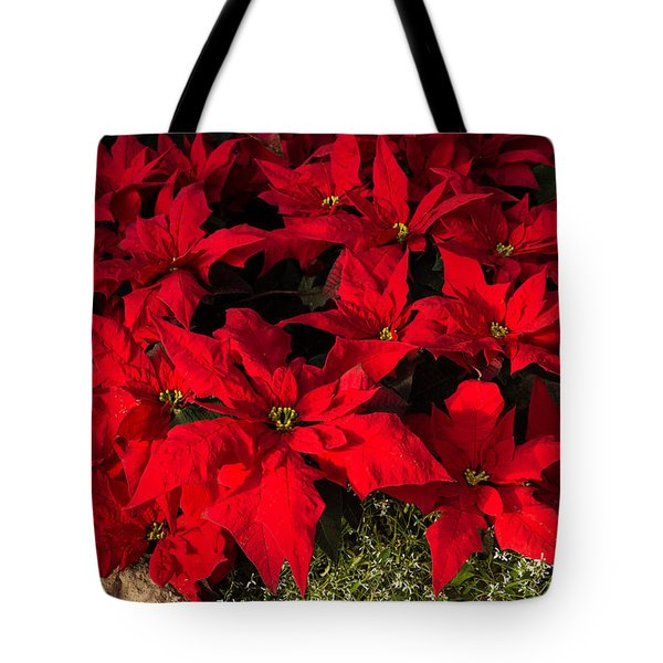 Merry Scarlet Poinsettias Christmas Star Tote Bag