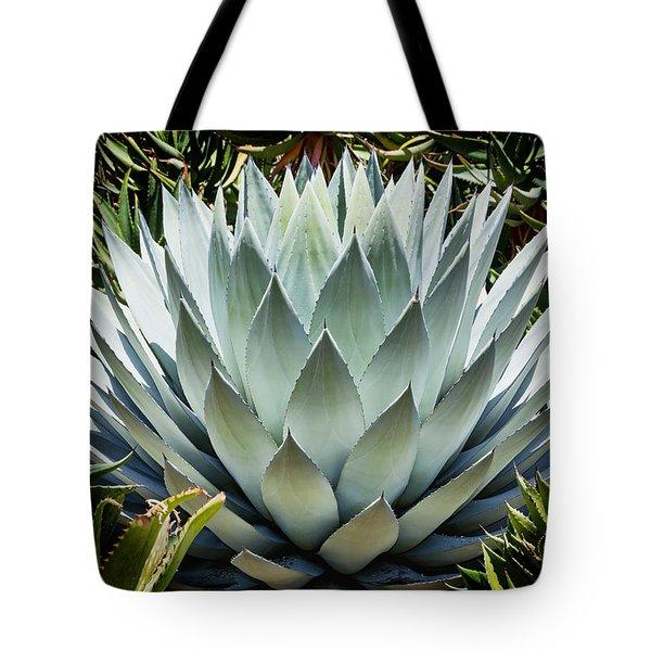 Mescal Tote Bag by Kelley King