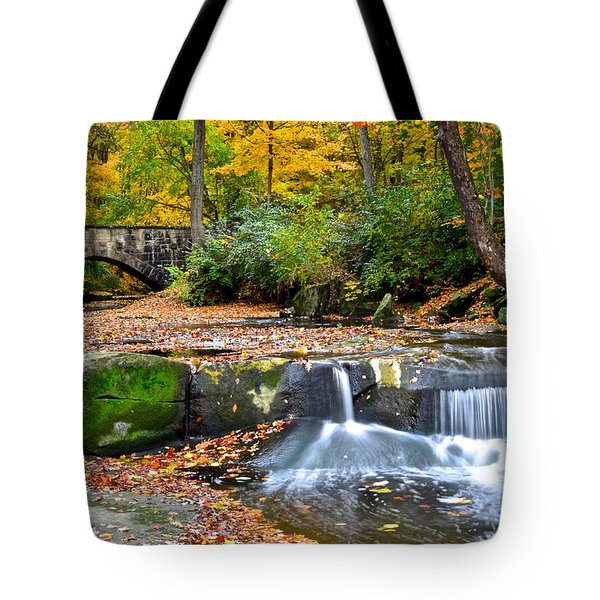Mesmerizing Tote Bag by Frozen in Time Fine Art Photography