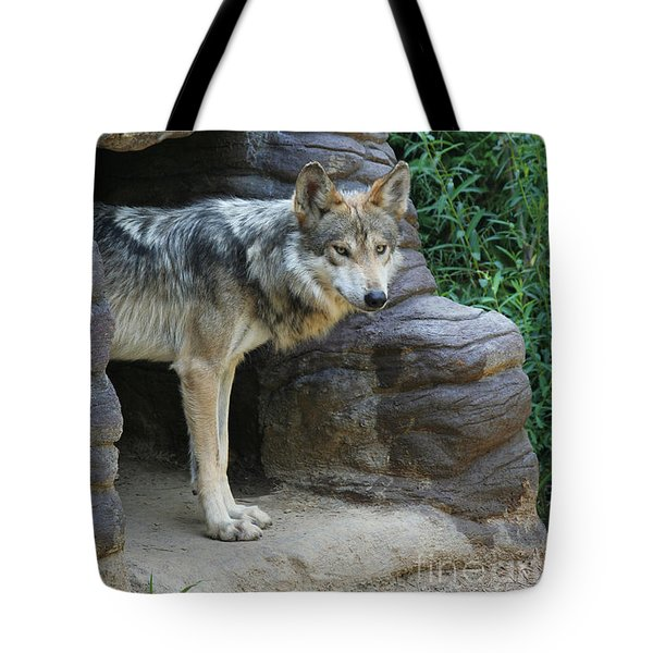 Mexican Wolf #2 Tote Bag