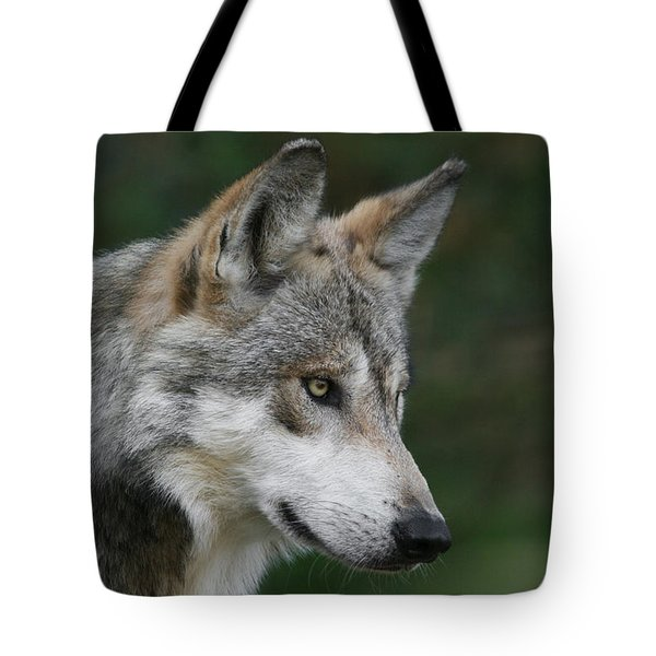 Mexican Wolf #5 Tote Bag