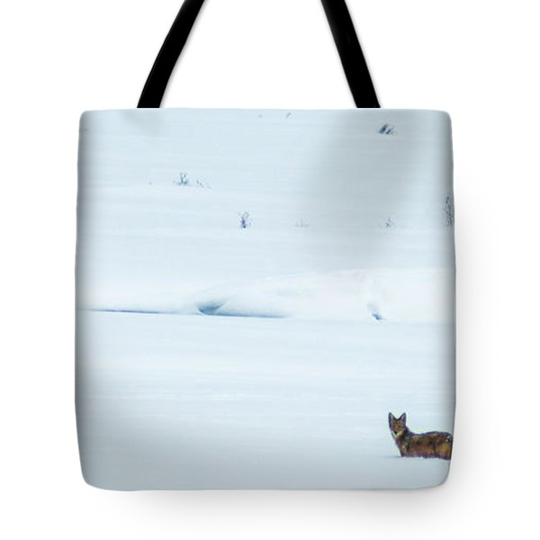 Michigan Coyotee  Tote Bag by Optical Playground By MP Ray