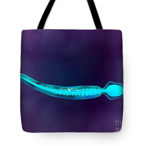 Microscopic View Showing Bone Structure Tote Bag by Stocktrek Images
