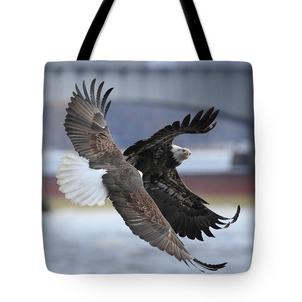 Tote Bag featuring the photograph Mid Air Fight by Coby Cooper