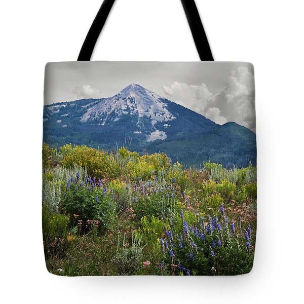 Mid Summer Morning Tote Bag by Daniel Hebard