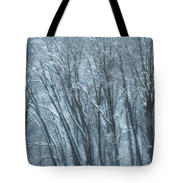Tote Bag featuring the photograph Mid-winter Storm by Jonathan Nguyen