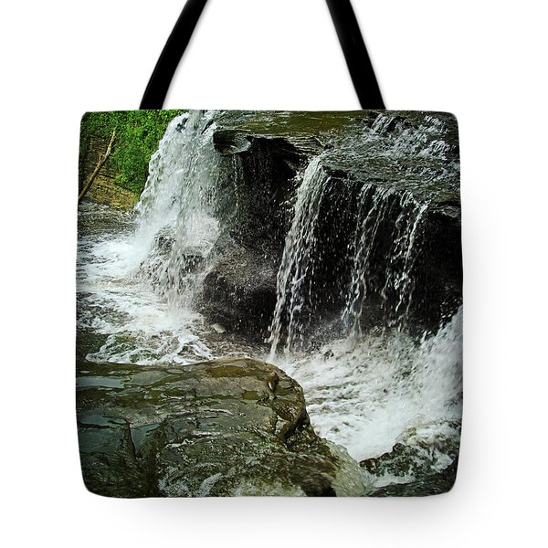 Middle Johnson Falls Tote Bag by Lianne Schneider