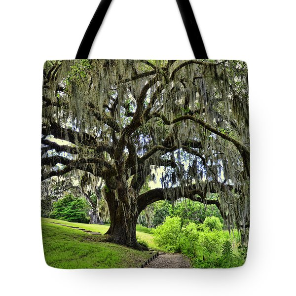 Middleton Place Oak  Tote Bag by Allen Beatty