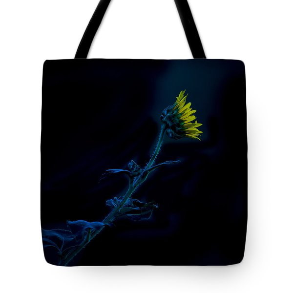 Midnight Sunflower Tote Bag by Darryl Dalton