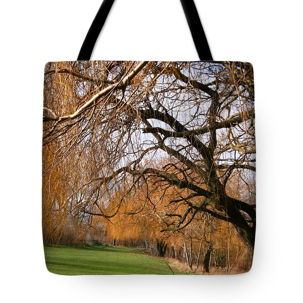 Tote Bag featuring the photograph Mild Winter In Mayesbrook Park - Dagenham by Mudiama Kammoh