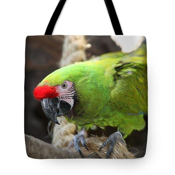 Military Macaw Tote Bag