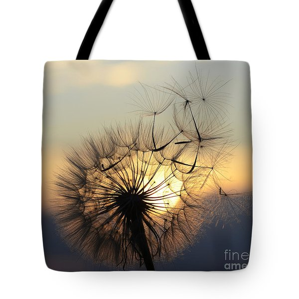 Milkweed 5 Tote Bag by Bob Christopher