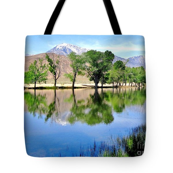 Tote Bag featuring the photograph Mill Pond by Marilyn Diaz