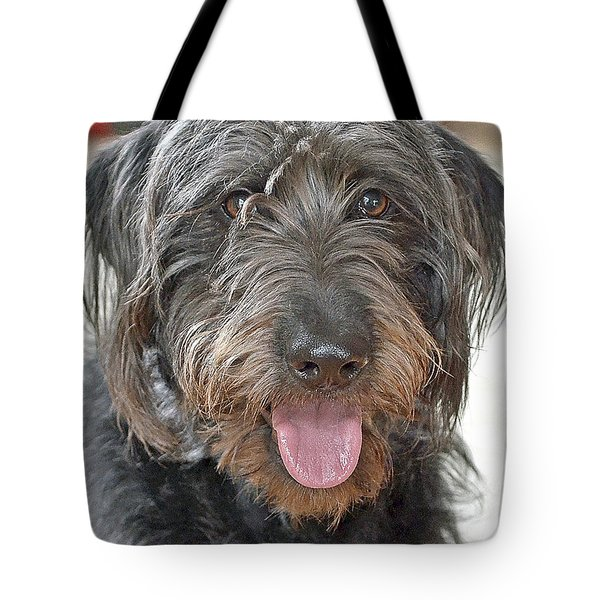 Tote Bag featuring the photograph Milo by Lisa Phillips