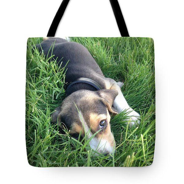 Milo Tote Bag by Julio Lopez