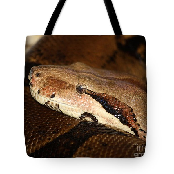 Mindfully Watching Tote Bag