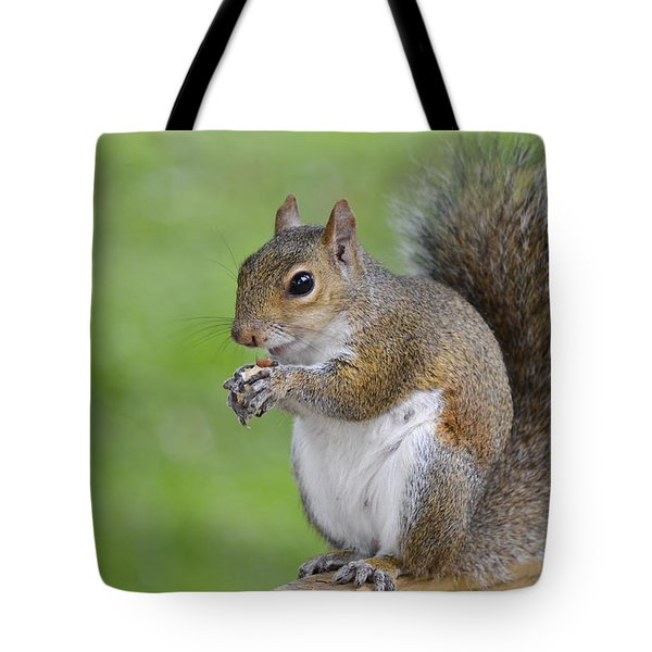 Mine Tote Bag by Carolyn Marshall