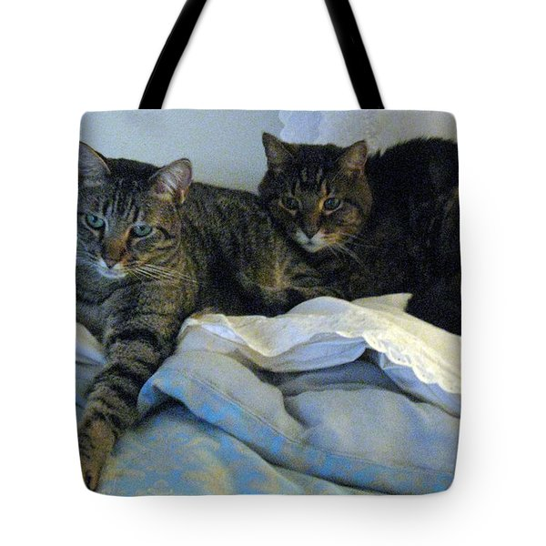 Ming And Sheba Resting  Tote Bag