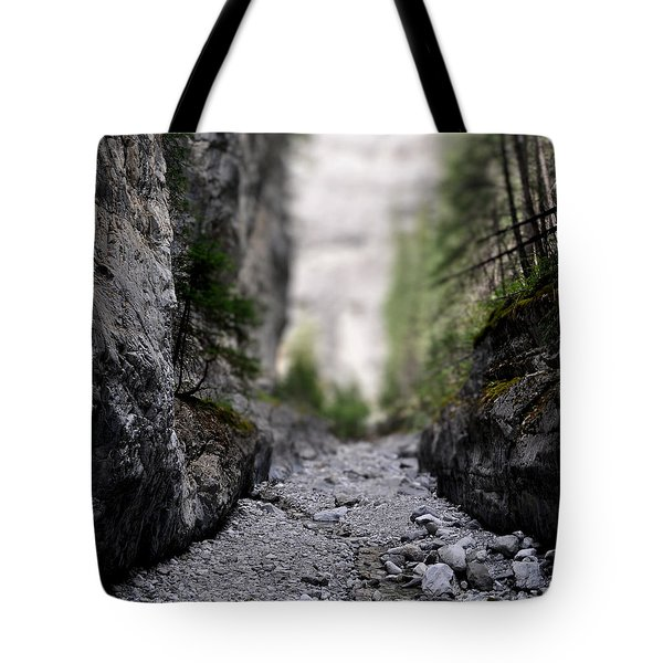 Mini Canyon Tote Bag