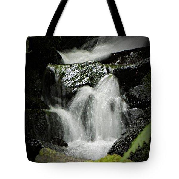 Mini Waterfall 2 Tote Bag